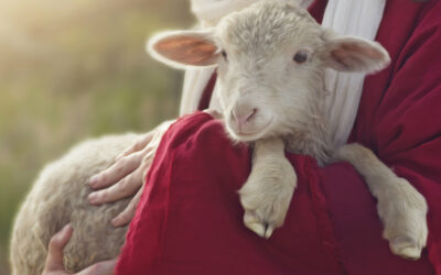 How Christ Secures His Sheep's Place In His Flock