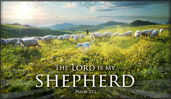God's Flowing Love For His Sheep