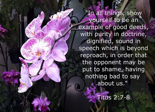 Above Reproach Preaching